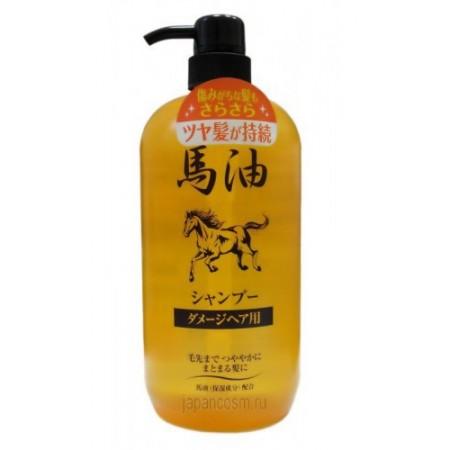 Шампунь для повреждённых волос в результате окрашивания